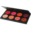 Theatrical Rouge Palette 8 colours